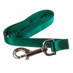 DogWatch 6 Foot Training Lead